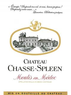 Château Chasse-Spleen 1996 Caisse bois d'origine de 12 bouteilles (12x75cl)