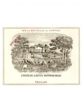 Château Lafite Rothschild 2009 Bouteille (75cl)