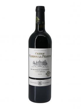 Château Cambon La Pelouse 2019 Bouteille (75cl)