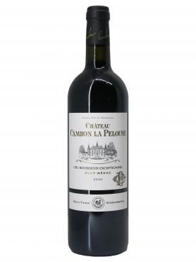 Château Cambon La Pelouse 2020 Bouteille (75cl)